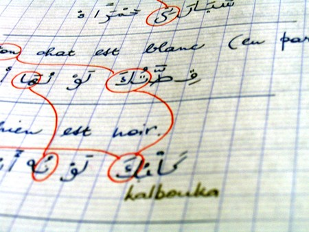 cours_arabe