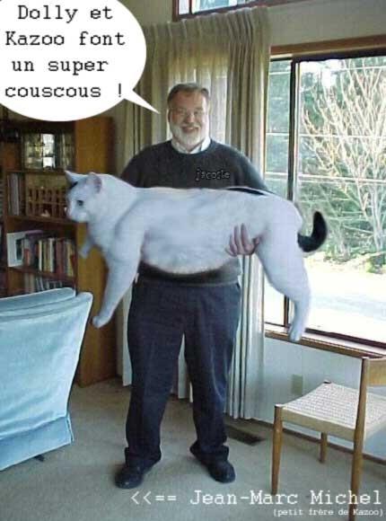 le_couscous_de_dolly___kazo