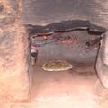 pizza au feu de bois dans notre vieux four