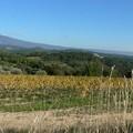une journée en Provence
