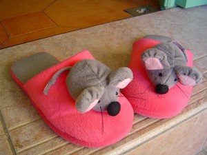 souris_chaussons