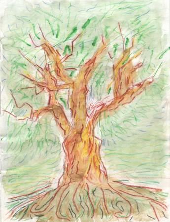 arbre33