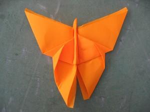 pliage_papillon_017