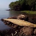 Le Lac Tana