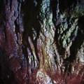 Porzh Teolenn l'intérieur d'une des grottes