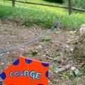 KK a fait de jolies pancartes colorées pour: ... les courges!