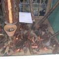 vitrine : les outils du résinier