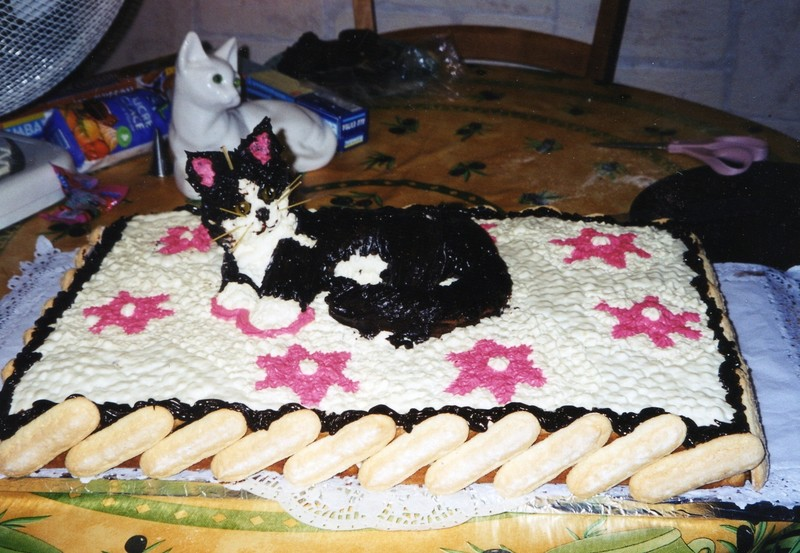 chat Gateau0126