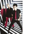 Green_Day_11