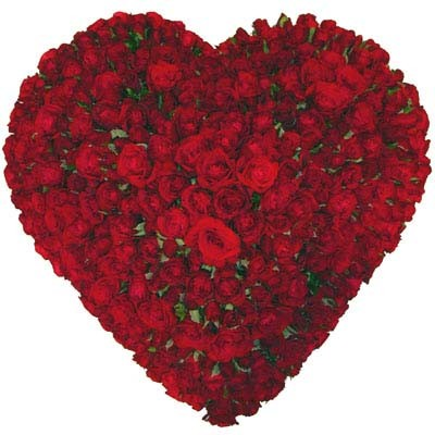 coeur_roses_rouges_20_copie