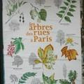 Les arbres des rues à Paris