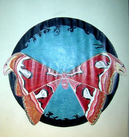 papillon6