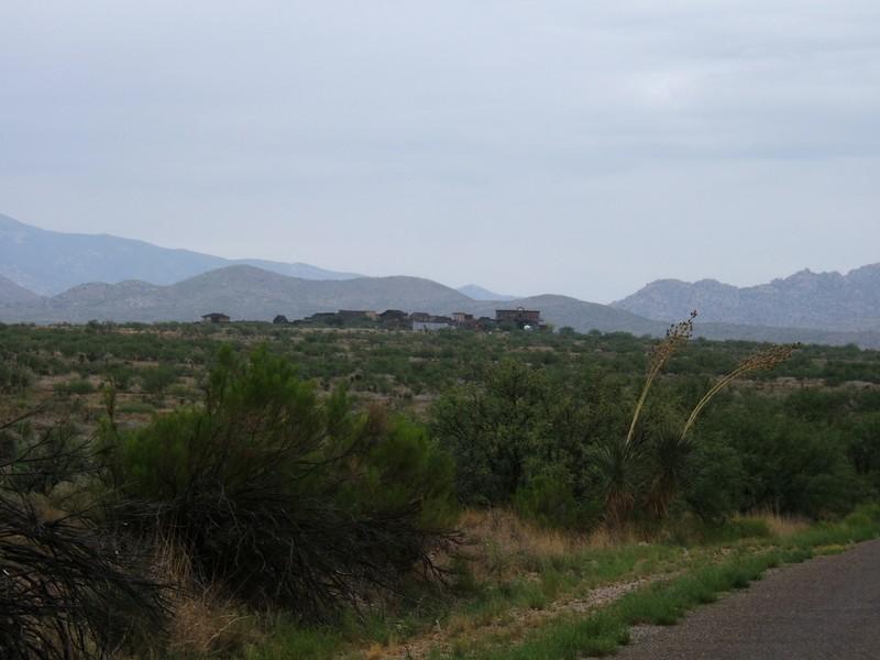 Arizona - Mescal au milieu du désert