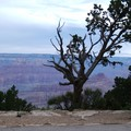 Arizona - Grand Canyon, la nuit tombe
