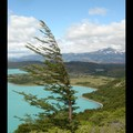 Samedi 24/12 - Patagonie - Torres del Paine
