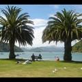 Samedi 14/01 - Picton - C'est pas paisible comme endroit ?
