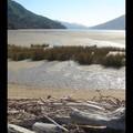 Dimanche 15/01 - NZ - Ile du sud - Marlborough sounds