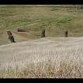 Dimanche 11/12 - Ile de Paques - Rano Ranaku