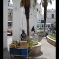 Lundi 24/10 - Sucre - Juits de fruits ambulants