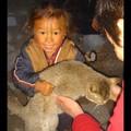 Népal - Trek - Porte un chat plus gros que soi...dur dur