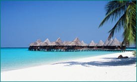 maldives___coco_palm4