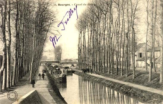 Inocybe flânant au bord d'un canal