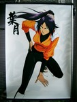 store_photo_bleach_shihouin_yoruichi