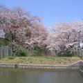 Hirosaki (Aomori)