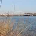 Le pont de l'Europe (Encore une histoire d'arc à Orléans !)