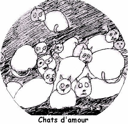 chats_d_amour
