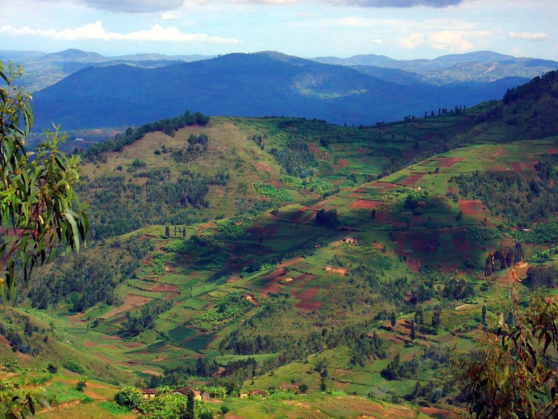 Image result for rwandan countryside