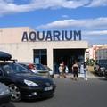 L'Aquarium (photos de l'intérieur plus tard)