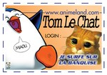 badge_tom_le_chat