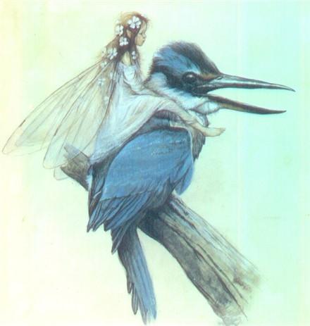 f_e_oiseau1