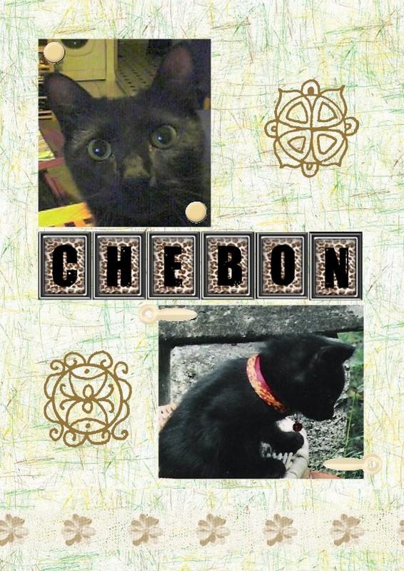 Chébon - Premier essai - 2005