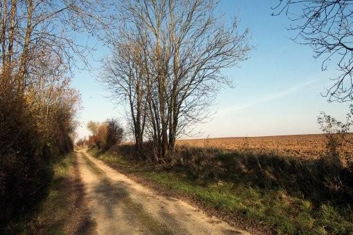 Route d'accès second PC 72ème RI