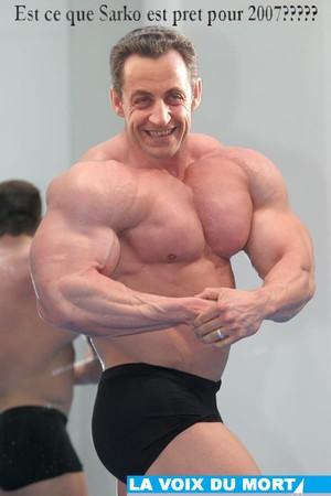 sarko_muscle
