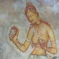 Les demoiselles de Sigirya