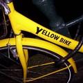 Le vélo de Brice (détail)