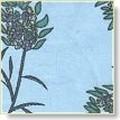 lavender_gardens_3