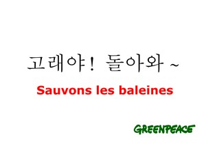 sauvons_les_baleines1