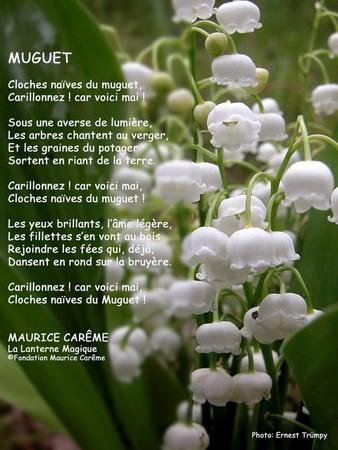muguet_20maurice_20careme_206401