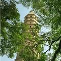 Pagode Haibao Ta à Yinchuan