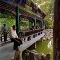 Parc à Zhongwei