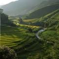 Sur le route de Weidong