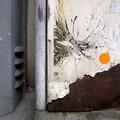 Balade de la balle orange