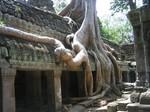 r2005_06_2_cambodia0096