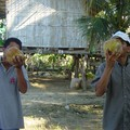 Noix de coco pour tout le monde!