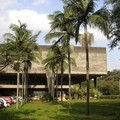 L'Université (USP)