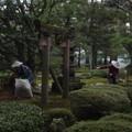 Ballade à Kenroku-en